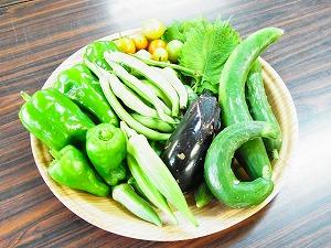 ノア畑野菜セット