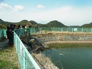 池の水を採取