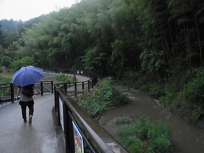 相川ホタル遊歩道