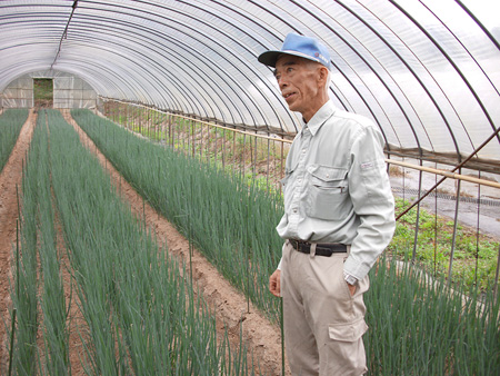 小林さんと葱の畝