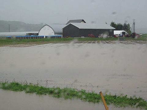 雨の中の相内農園