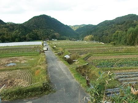 岸和田市塔原の風景